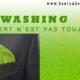 Article : Le Greenwashing : Quand le vert n'est pas toujours vert